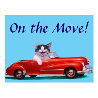 Kitten in a Red Convertible Postcard