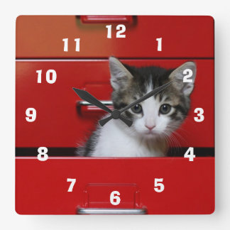 Kitten in a red drawer clocks