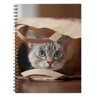 Kitten in Grocery Bag Notebook