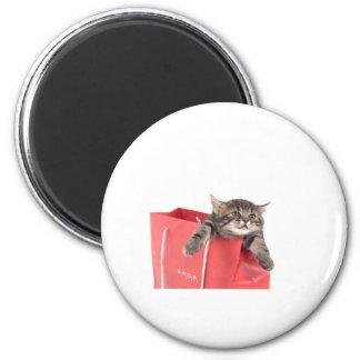 kitten in has bag red magnet
