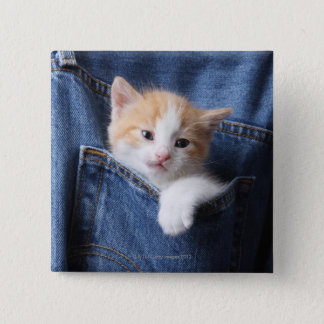 kitten in jeans bag 2 inch square button