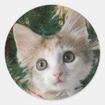 Kitten in Stocking Stickers