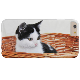 Kitten in the basket barely there iPhone 6 plus case