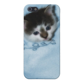 Kitten in the Pocket iPhone 5/5S Case