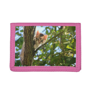 Kitten In Tree Trifold Wallets