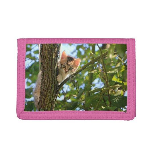 Kitten In Tree Trifold Wallets