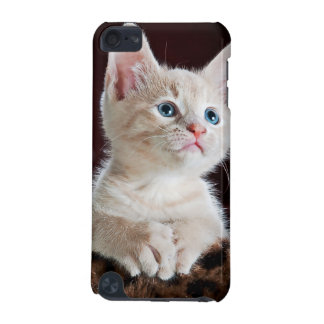 Kitten iPod Touch (5th Generation) Case