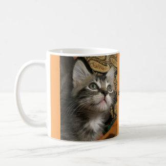"Kitten ""Keep Looking Up!"" Mug"