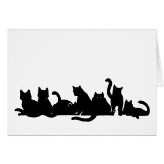 Kitten Line Card