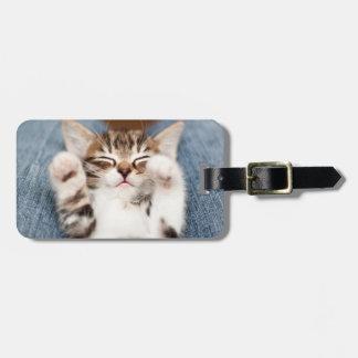 Kitten on lap. luggage tag