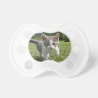 kitten pacifier