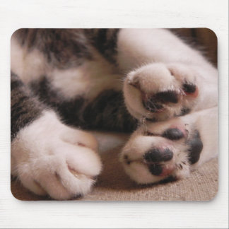 Kitten Paws Mouse Pad