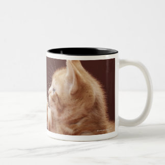 Kitten playing with Christmas bauble on tree Two-Tone Coffee Mug