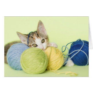 Kitten Playing Yarn Card