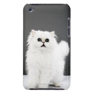 Kitten Portrait iPod Touch Covers