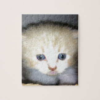 kitten power jigsaw puzzle