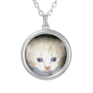 kitten power silver plated necklace