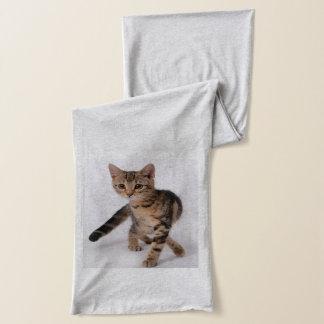 Kitten Scarf