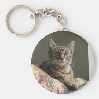 Kitten Sitting on Sofa Basic Round Button Keychain