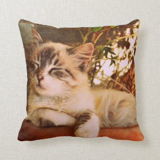 Kitten Sleeping in a Terracotta Color Pot Throw Pillow