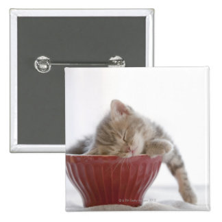 Kitten Sleeping in Bowl 2 Inch Square Button