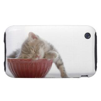 Kitten Sleeping in Bowl iPhone 3 Tough Covers
