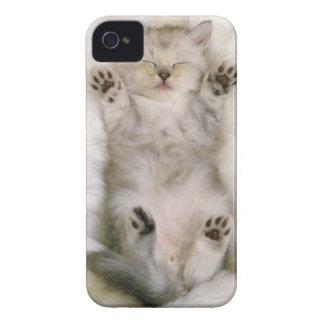 Kitten Sleeping on a White Fluffy Carpet, High iPhone 4 Case