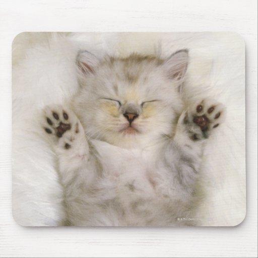 Kitten Sleeping on a White Fluffy Carpet, High Mouse Pads