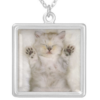 Kitten Sleeping on a White Fluffy Carpet, High Silver Plated Necklace