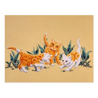 Kitten Spring Postcard
