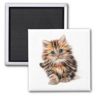Kitten Square Magnet