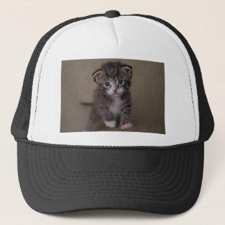kitten trucker hat