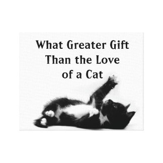 Kitten with a quote on a wrapped canvas