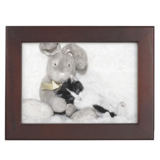 Kitten with her sniggle monster teddy bear keepsake box