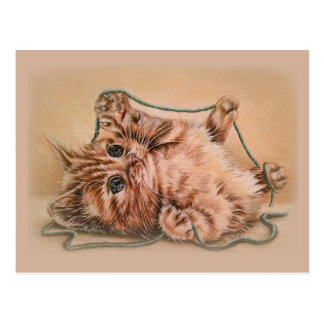 Kitten with Yarn drawing, pet cat art illustration Postcard