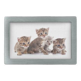 Kittens and more Kittens Belt Buckle