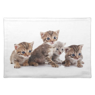 Kittens and more Kittens Placemat