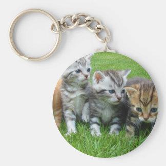 kittens basic round button keychain