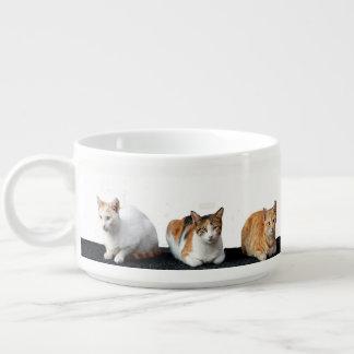 Kittens Bowl