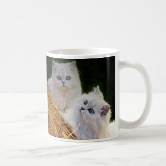 Kittens come play coffee mug