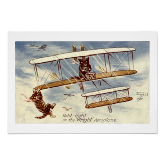 Kittens Flying Plane Wall Art