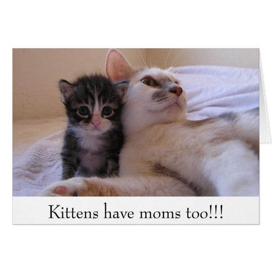 Kittens have moms too!!! card