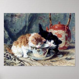 Kittens having tea party poster