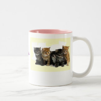 kittens, I have an aversion to toads that wear ... Two-Tone Coffee Mug