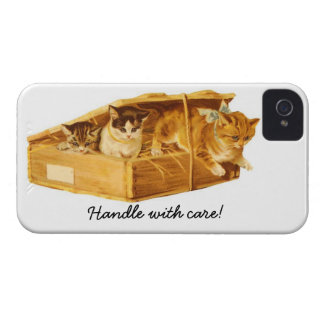Kittens in a Crate Blackberry Bold Case