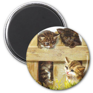 Kittens in a Fence Magnet