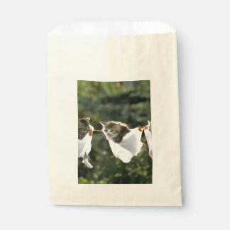 Kittens in underwear on clothesline favour bag