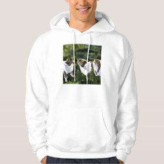 Kittens in underwear on clothesline hoodie
