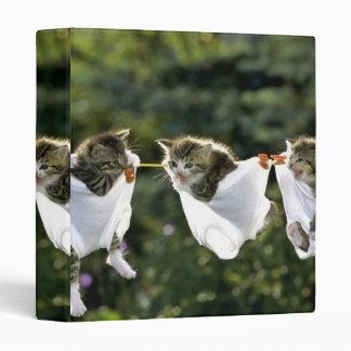 Kittens in underwear on clothesline vinyl binder