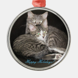 Kittens Photo Silver-Colored Round Ornament